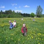 våren 2010 308